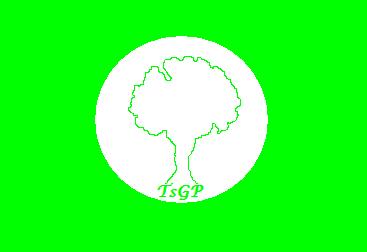 Flag of TsGP