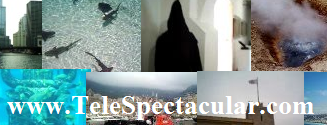 www.Telespectacular.com